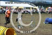 DSC_1647