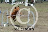 DSC_1740
