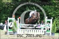 DSC_2003